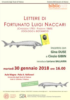 Locandina Naccari A3